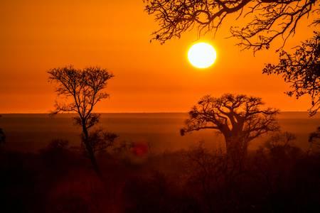 Couché de soleil dans la savane africaine