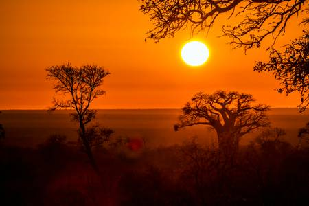 Tramonto nella savana africana