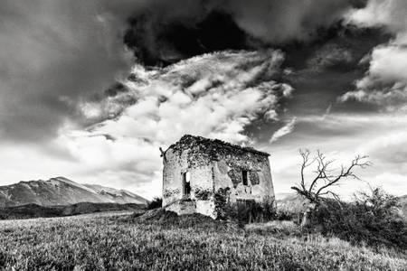 The tree and ruin II