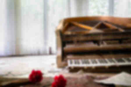 Abandoned Piano with Flowers
