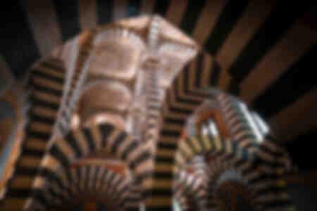 Cappella Zebra