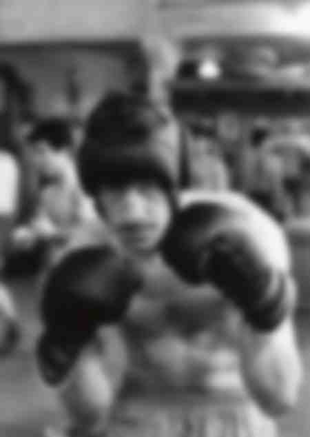 Jean-Paul Belmondo boxant