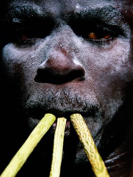 SIMB 3- I re leone del Senegal