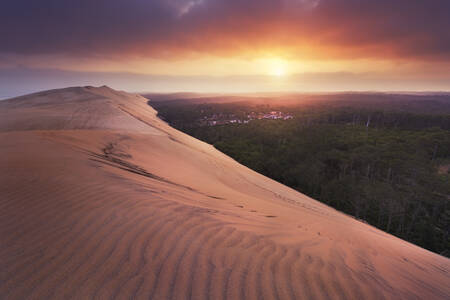 Awakening on the Dune