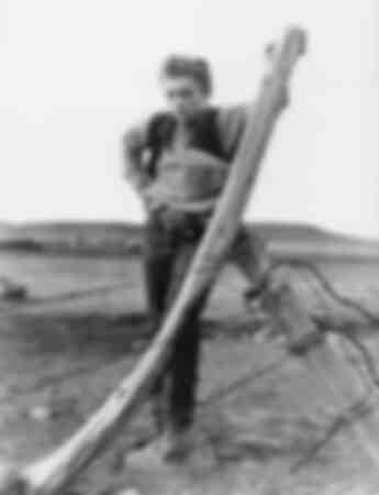 1956 Géant James Dean