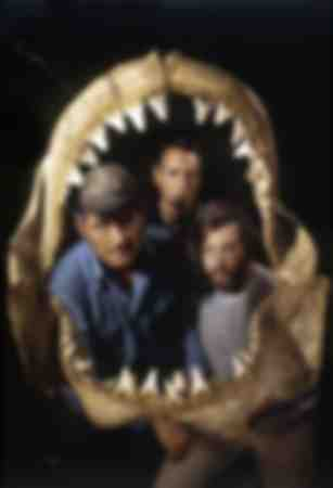 The Teeth of the Sea Steven Spielberg 1975