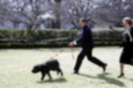 Ronald Reagan walks his dog with Margaret Thatcher