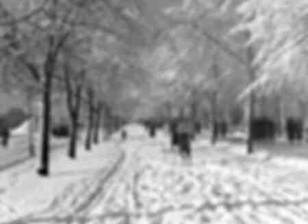 Skidåkning på Stockholms gator 1937