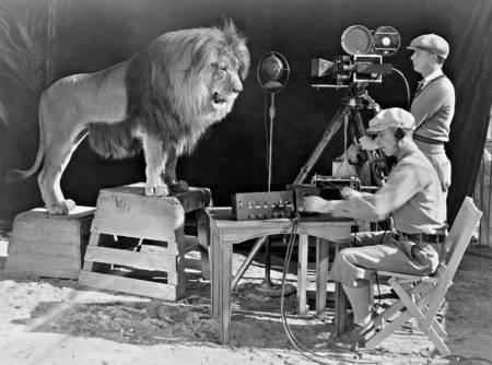 Le Lion de Metro Goldwyn Mayer