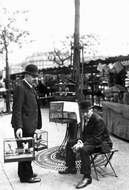 Bird sellers in 1900