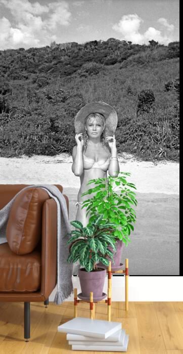 Brigitte Bardot at the beach