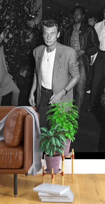 Johnny Hallyday, 20 de septiembre de 1985