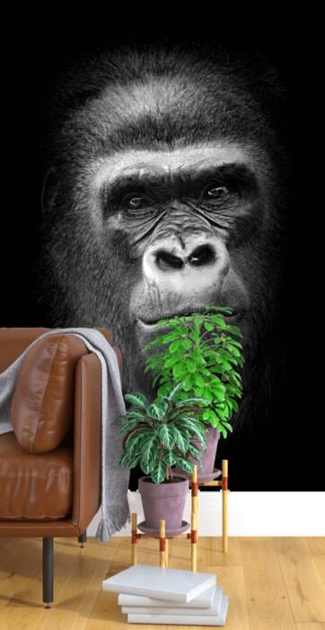 Gorille portrait