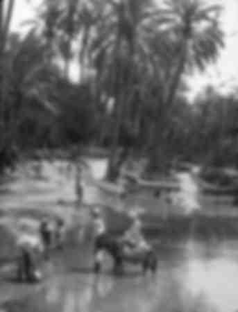 Au bord de l'Oued - 1900