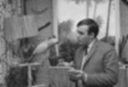 Mann spricht mit einem Papagei 1966