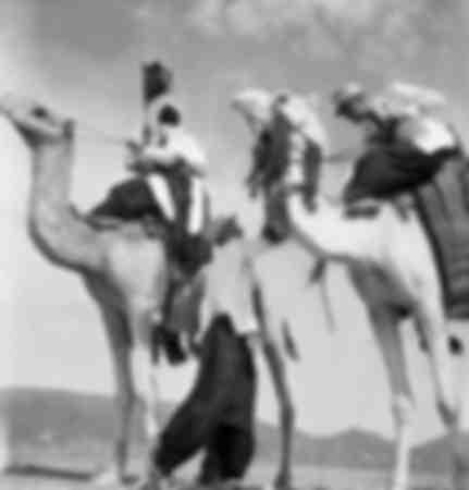 Revue d'une compagnie de méharistes au Sahara