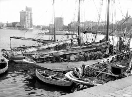 Bateaux dans le vieux port