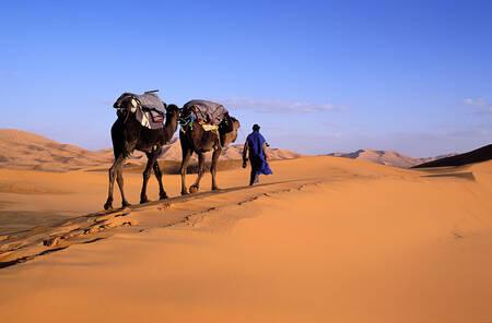 Randonnée dans le désert de l'Erg Chebbi