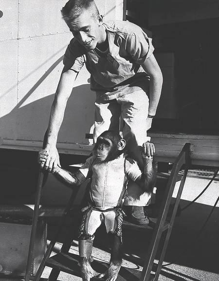 Ham - Un chimpanzé dans l'espace