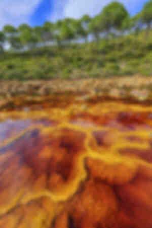 Il fiume di sangue