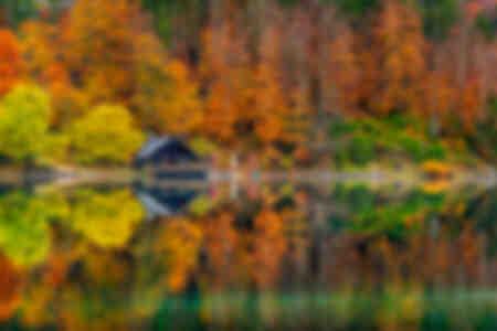 Unusual cabin in autumn colors