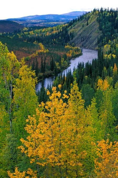Le long de la route d'Alaska
