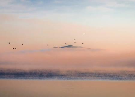 Vol au dessus du lac