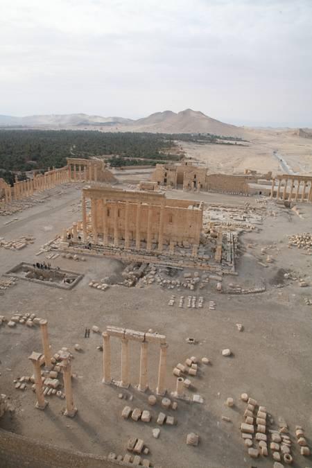 Aerial view of Palmyra