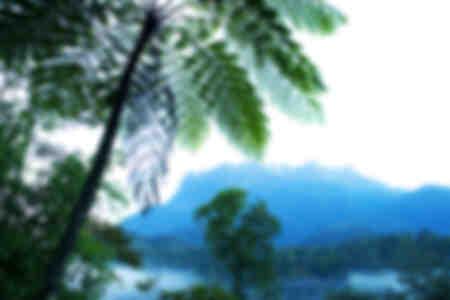 PN du mont Kinabalu