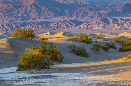 La Parc national de Death Valley