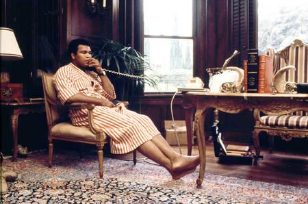 Muhammad Ali and hidden cat