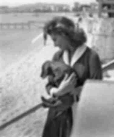 Sophia Loren Cannes 1955