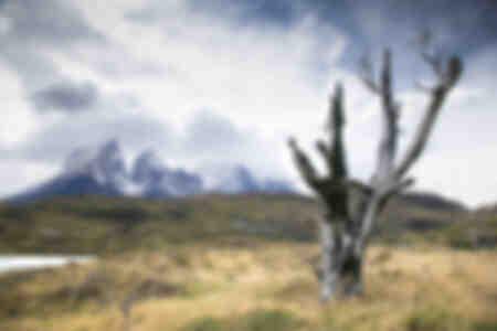 Torres del Paine - Patagonien 9