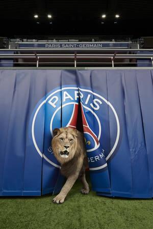 La porte des lions