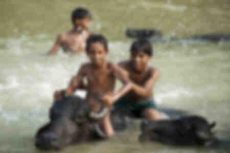 Niños jugando en el agua.