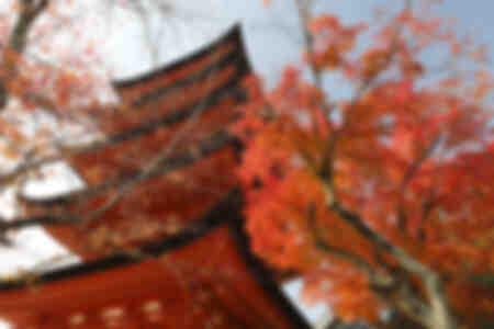 Fünfstöckige Pagode Japan