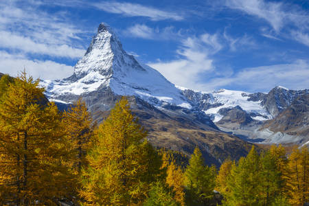 Matterhorn and larch tree forest in autumn