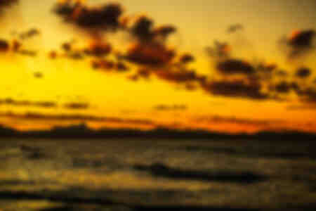 Quallen Sonnenuntergang 2