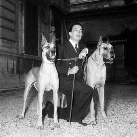 Salvador Dalí con sus perros