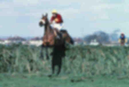 Course de chevaux -1977 Grand National