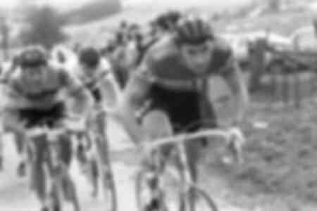 Eddy Merckx 1977