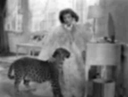 Katharine Hepburn - Bringing up Baby