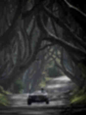 Austin Healey driving through the Dark Hedges