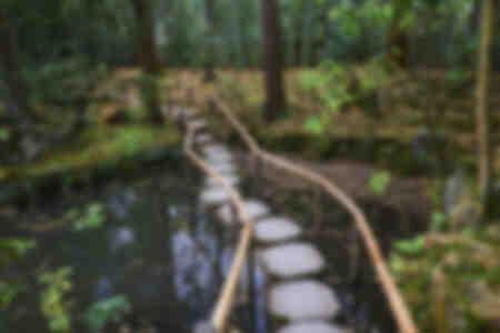 Zen-Brücke