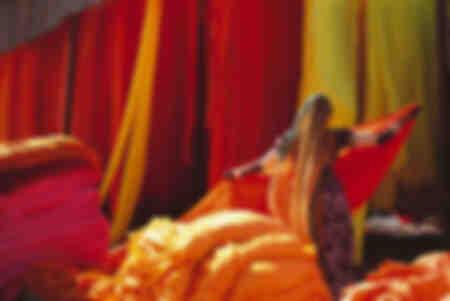 Les couleurs du sari
