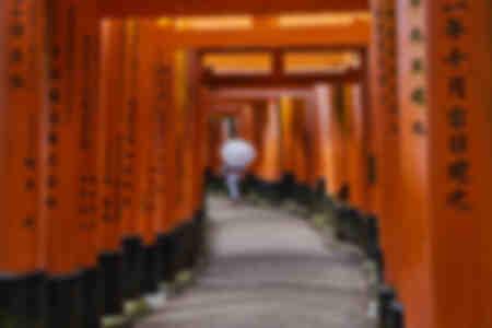 Die Torii von Inari Taisha