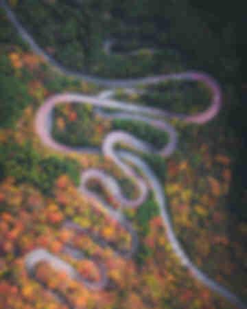 Serpente d'autunno
