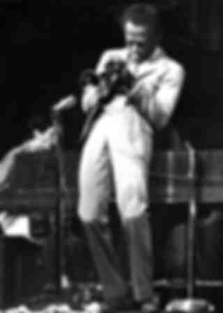 Miles Davis et Bob Sibilia