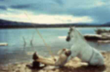 Scena dal film Lucky Luke