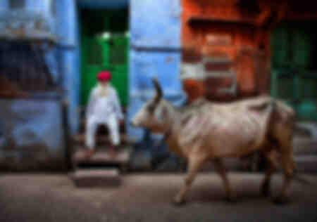 La ciudad azul de la India